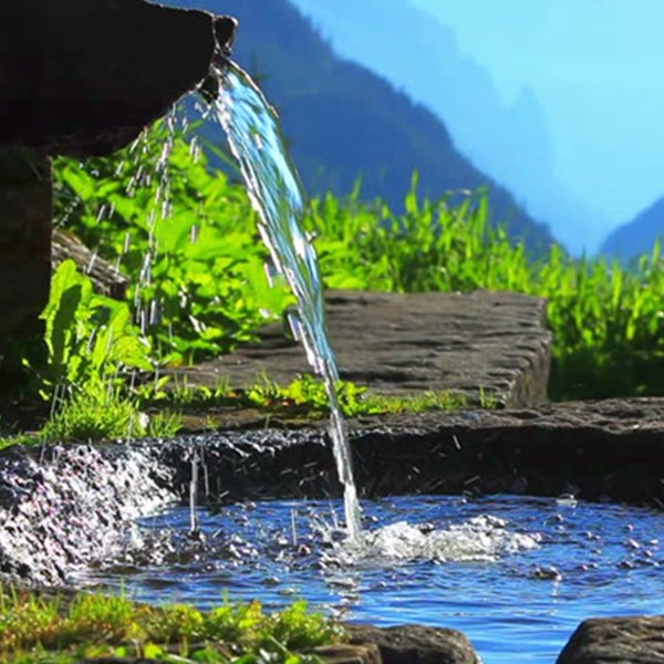 Starting a Spring Water Bottling Business? Here Are Some Top Tips to Get You Started